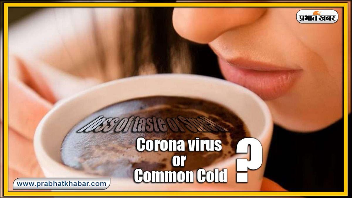 गंध और स्वाद में बदलाव Corona या आम फ्लू के लक्षण? अब ऐसे करें पता, नये अध्ययन में हुआ खुलासा