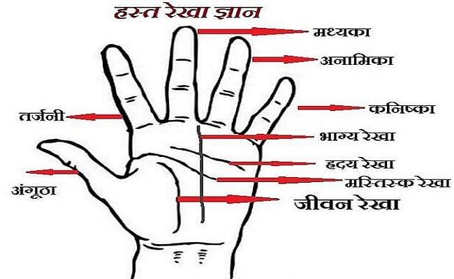 Hastrekha, Money Line: हाथ में यहां होती है पैसे वाली रेखा, जानिए कौन सी हस्त रेखा आपको बनाती है धनवान