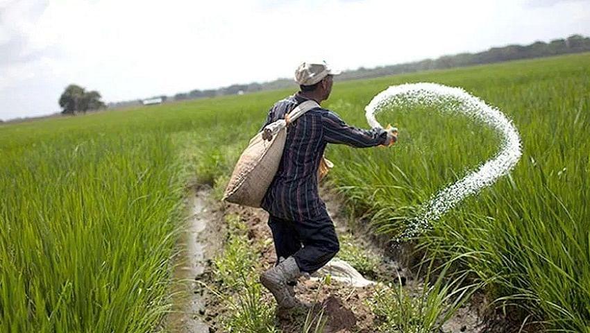 बिस्कोमान में यूरिया का स्टॉक खत्म, दुकानों का चक्कर लगा रहे किसान