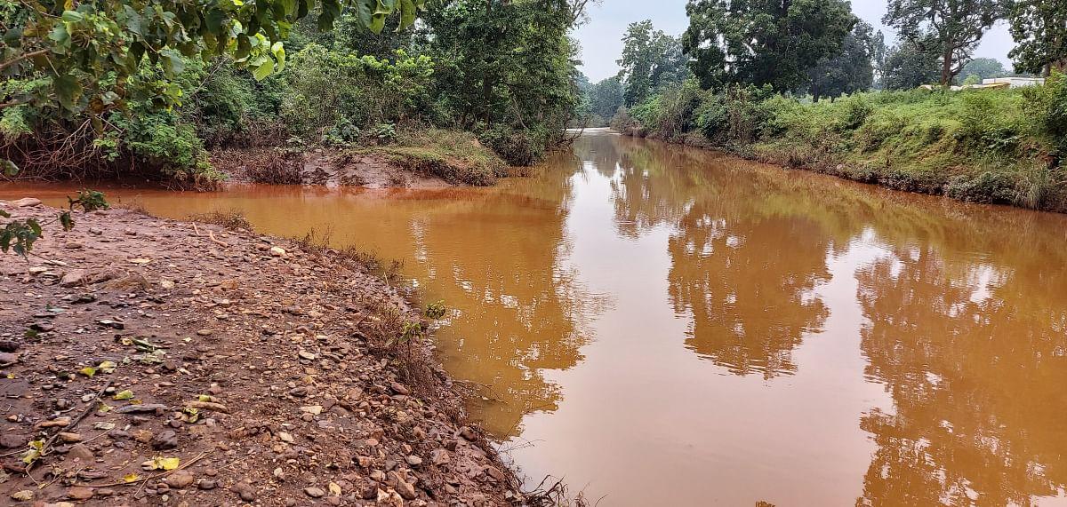 दुआरगुई नाला से फाइंस आकर कोयना नदी में मिल जाते हैं, जिससे नदी का पानी प्रदूषित हो गया है.