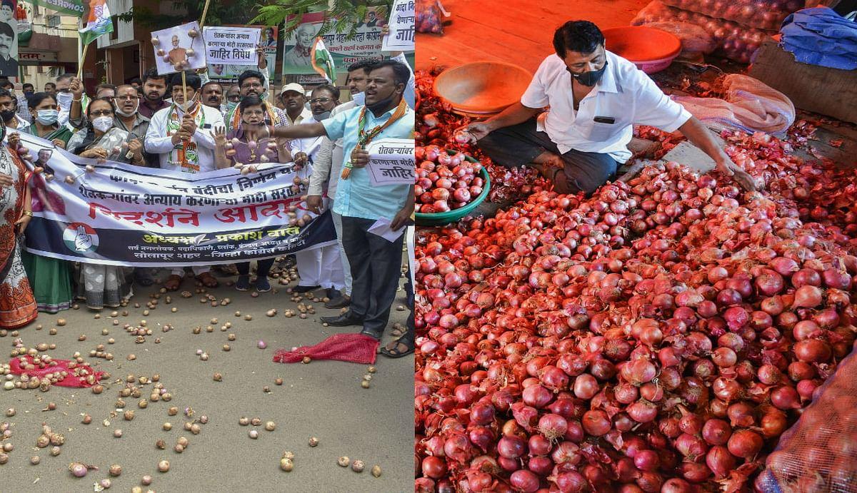 प्याज निर्यात पर रोक लगने के बाद महाराष्ट्र सरकार ने ठानी तकरार, ठाकरे मंत्रिमंडल में किया गया बड़ा फैसला