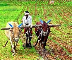 बिहार के बाढ़ग्रस्त क्षेत्र के किसान कर सकते हैं आवेदन, मिलेगा कृषि योजना का लाभ