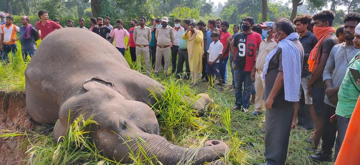 हाथी की मौत की खबर सुनकर भारी संख्या में लोग वहां जुट गये.