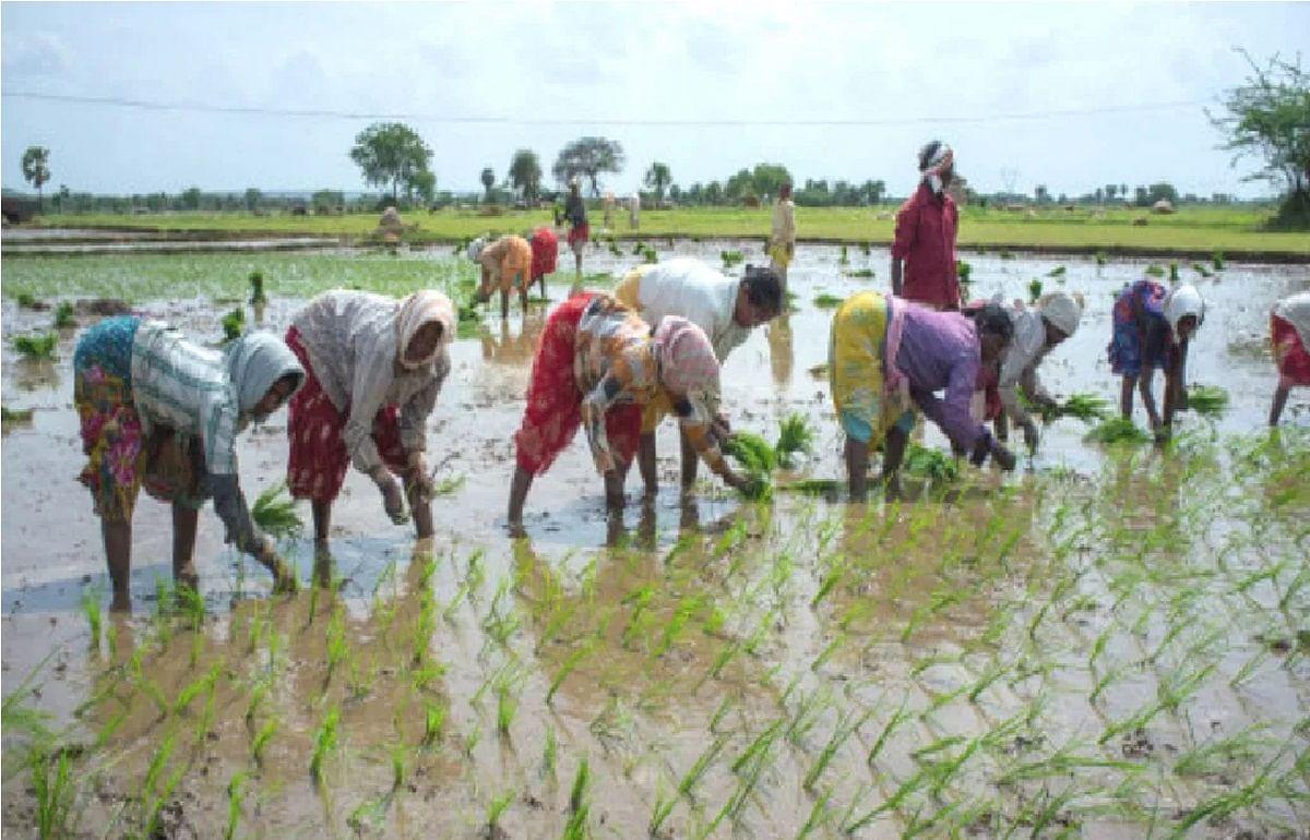 कृषि विधेयक: सरकारी दावा और विरोधियों का पक्ष, पढ़ें सवाल और उनके जवाब