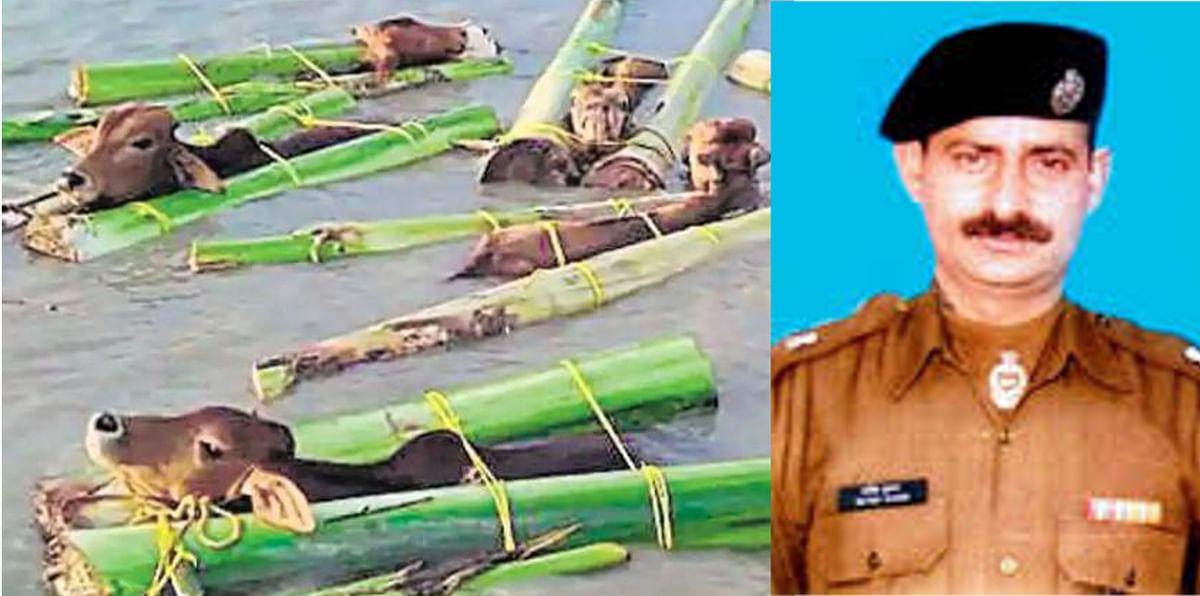मवेशी तस्करी के खिलाफ CBI की बड़ी कार्रवाई, BSF के पूर्व कमांडेंट समेत 4 पर केस दर्ज, क्या है सॉकेट बम का खेल