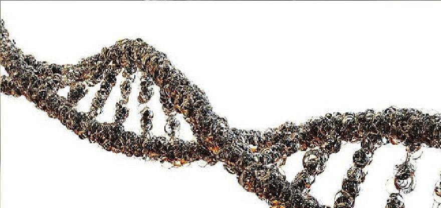 एंटीबॉडी की मौजूदगी कोविड से सुरक्षा की गारंटी नहीं : वैज्ञानिक