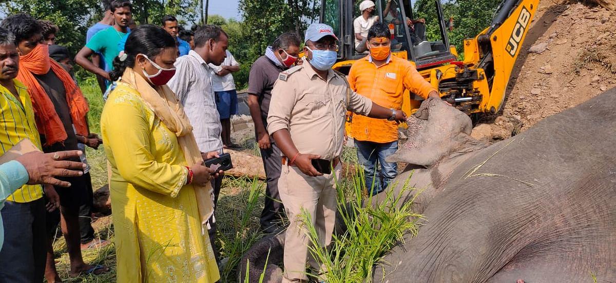 वन विभाग की टीम ने कराया हाथी के शव का पोस्टमार्टम.