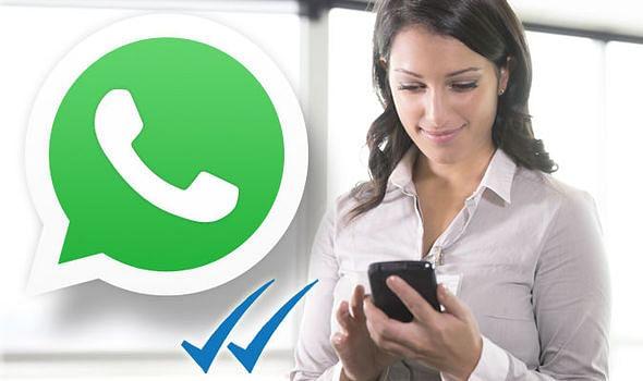 Whatsapp पर बिना ब्लू टिक के कैसे देखें मैसेज? जानें आसान तरीका...