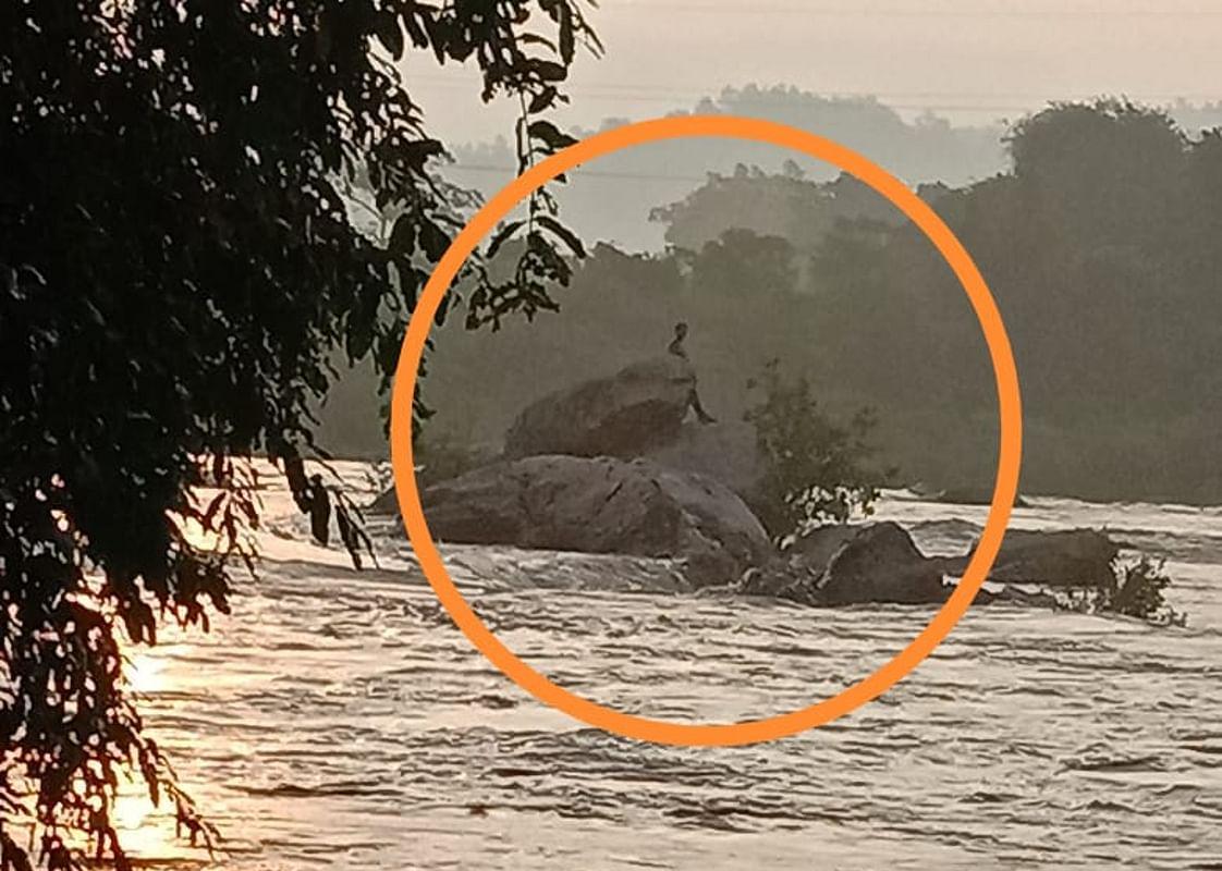 VIDEO: मूसलाधार बारिश के बीच रात भर उफनायी नदी में फंसा रहा मछुआरा, सुबह पहुंची एनडीआरएफ की टीम