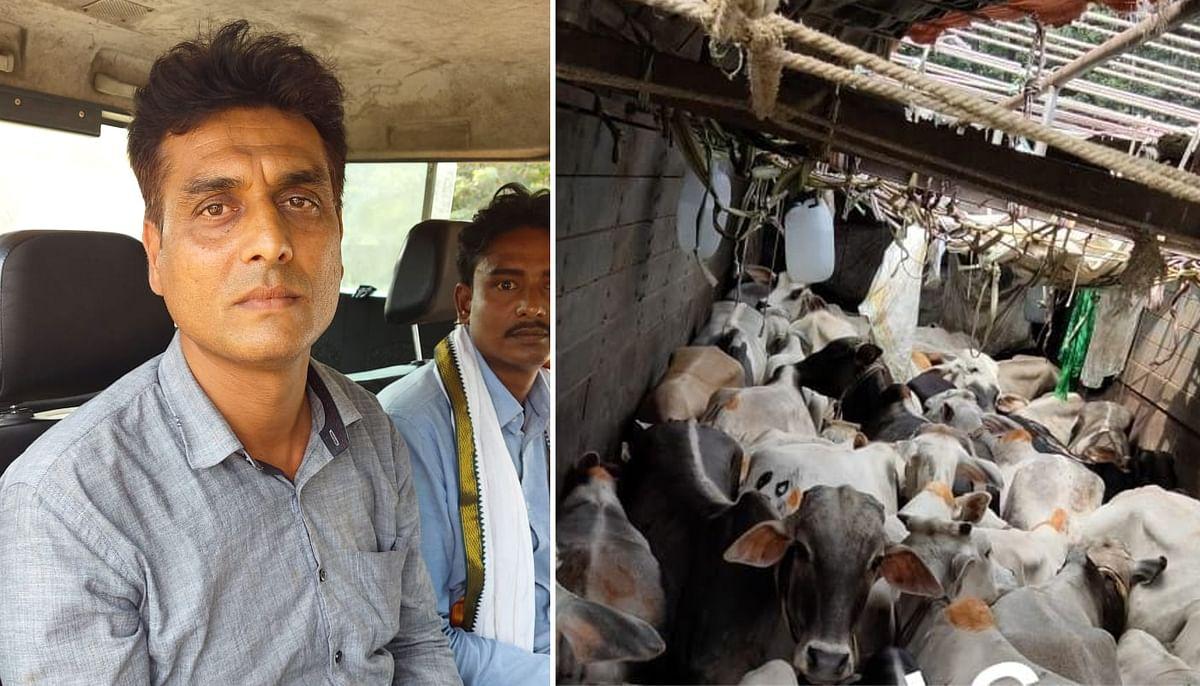 Jharkhand News: अंतरराज्यीय मवेशी तस्कर गिरोह के सरगना यूसुफ खान उर्फ बबलू को रामगढ़ पुलिस ने किया गिरफ्तार