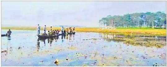 बिहार चुनाव 2020: 31 साल से विकास को तरस रहा एशिया का प्रसिद्ध कावर झील, न टाल बना, न पक्षी विहार और न ही चुनावी मुद्दा