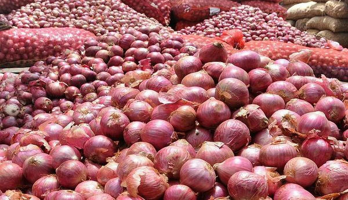 Onion price hike again  : देश में फिर बेकाबू हुआ प्याज, आम आदमी का निकल रहा आंसू, दाम पहुंचा 70 के पार