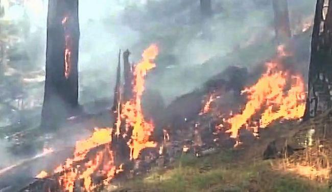 कश्मीर के सीमावर्ती इलाकों में घुसपैठ के लिए जंगलों में आग लगा रहे आतंकी
