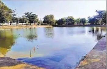 Chhath Puja 2020 : द्वापर काल से जुड़ी है बिहार के इस सूर्य मंदिर की गाथा, पूरी होती है भक्तों की मनोवांछित मुरादें