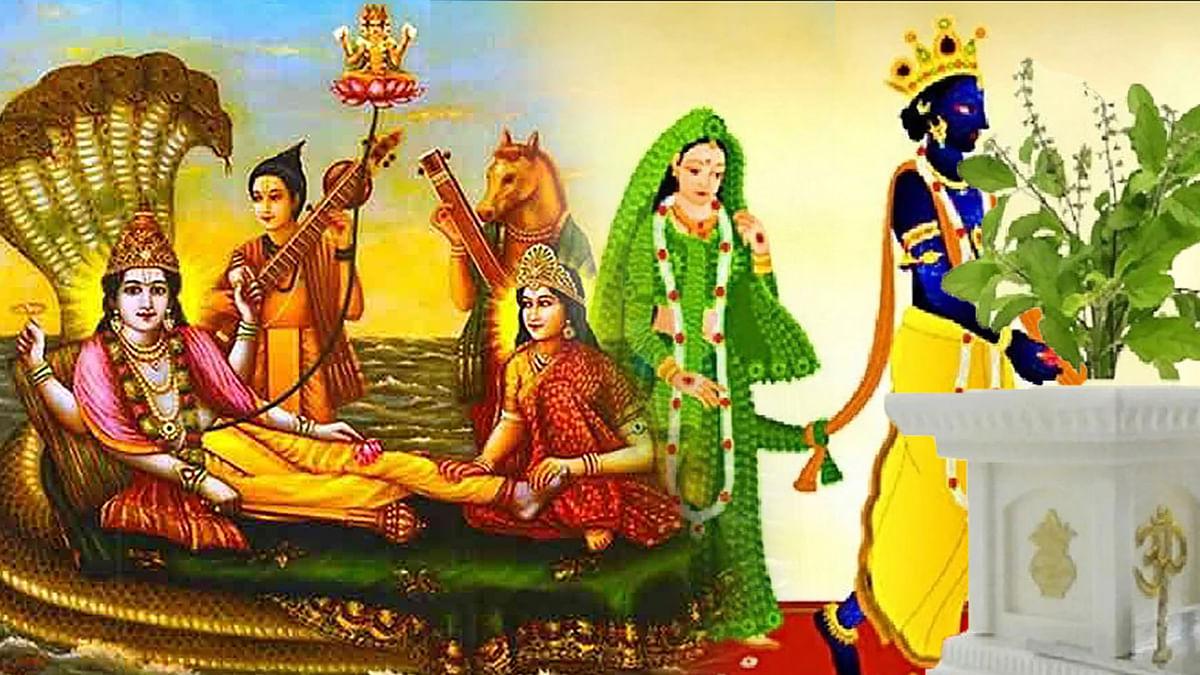 Tulsi Vivah/Dev Uthani Ekadashi 2020: आज व्रत करने के 10 फायदे, तुलसी पूजा भूल कर भी न करें ऐसे लोग, ध्यान में रखें ये बातें