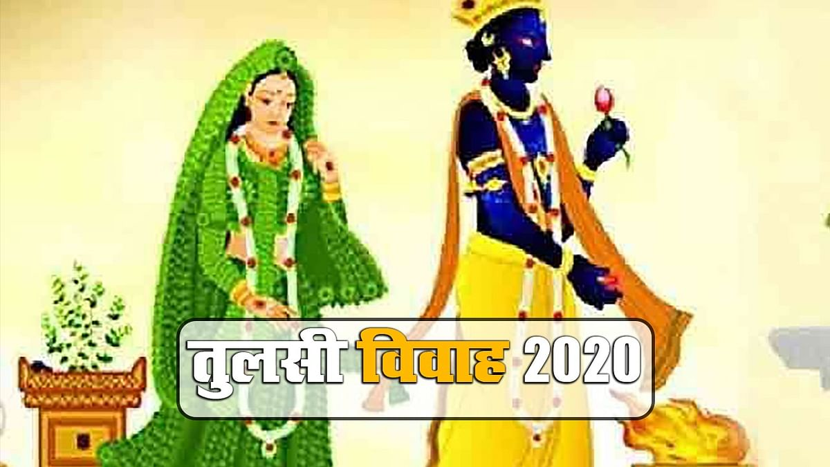 Tulsi Vivah 2020: आज शालीग्राम के साथ होगा तुलसी जी का विवाह, जानें पूजा विधि, शुभ मुहूर्त और नियम...