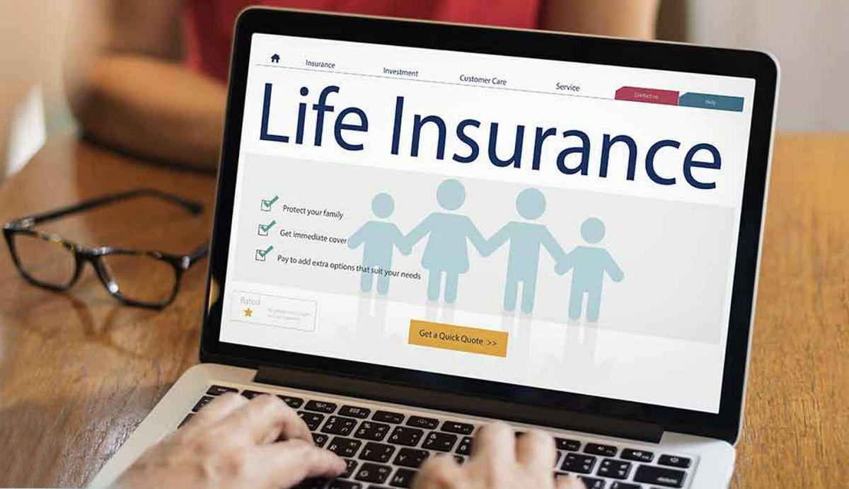 Life Insurance Plan : लाइफ इंश्योरेंस कराने से पहले बाजार में मौजूद विकल्पों की कीजिए तलाश, मिलेगा भरपूर फायदा, जानिए कैसे?