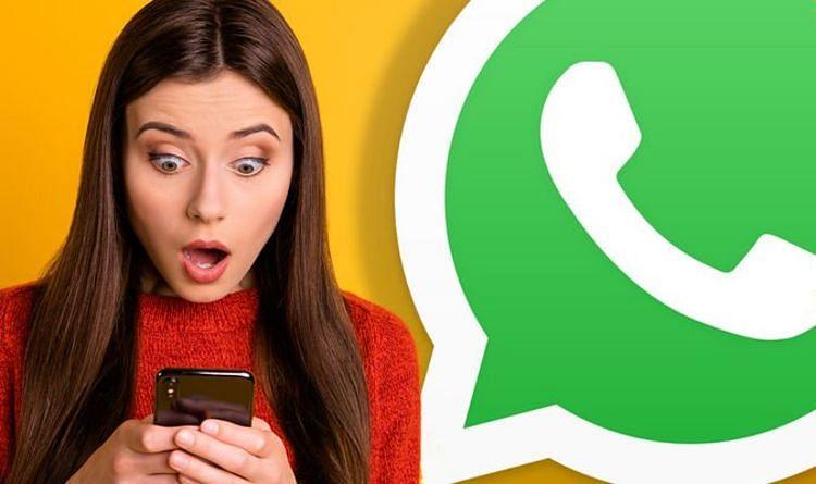 WhatsApp पर हर रोज कितने मैसेज भेजे जाते हैं? जवाब जानकर उड़ जाएंगे आपके होश