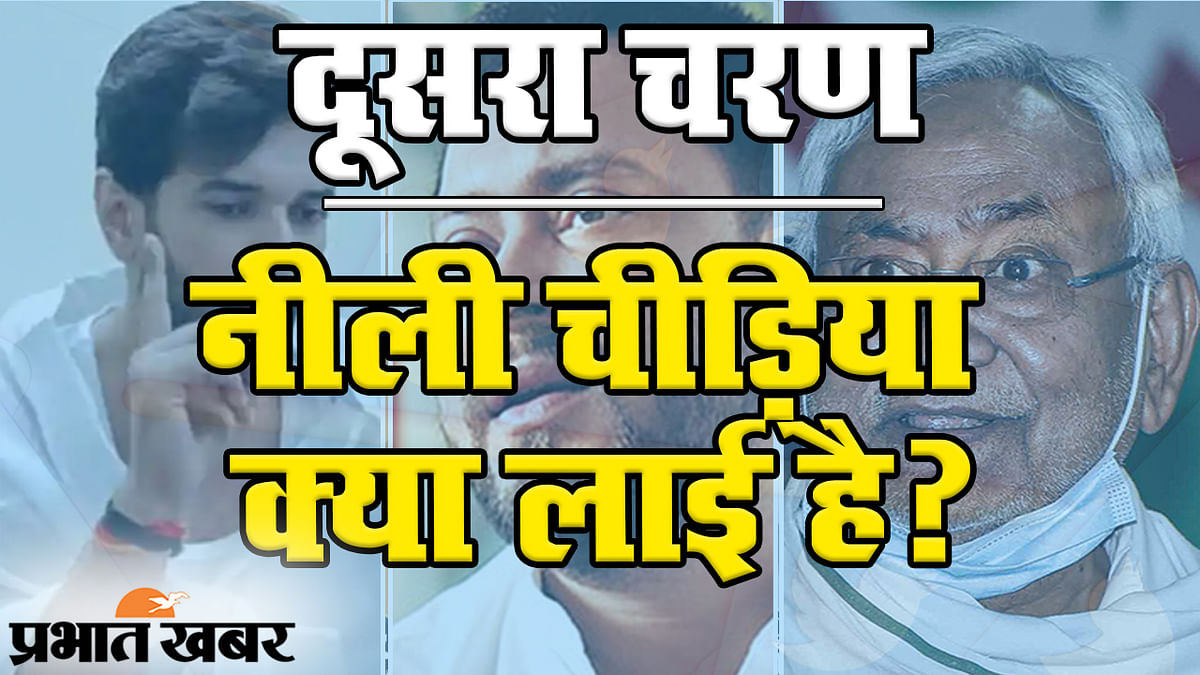 Bihar Election 2020: दूसरे चरण में वोटिंग की रफ्तार बढ़ी तो सोशल मीडिया पर बनी सरकार, देखिए नीली चिड़िया क्या लाई है?