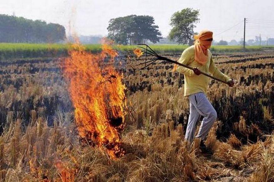 बिहार में पराली जलानेवाले किसान सरकारी योजनाओं से रहेंगे वंचित