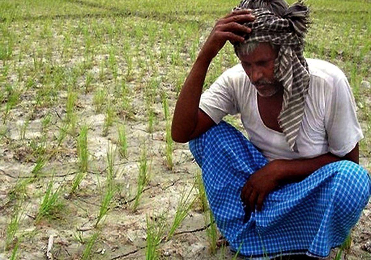 Bihar News: Kisan Andolan के बीच बिहार सरकार ने लिया बड़ा फैसला, किसानों को मिलने वाला डीजल अनुदान बंद