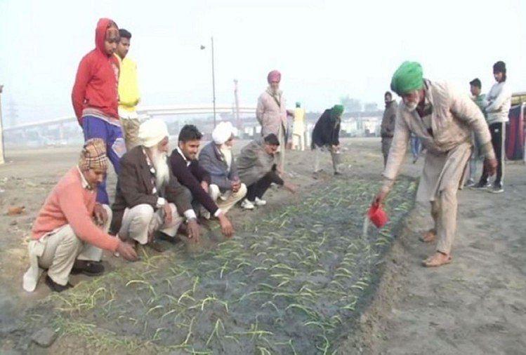 Kisan Andolan News: किसानों ने हाइवे को ही बनाया अपना घर, प्रदर्शन स्थल पर अब शुरू की खेती