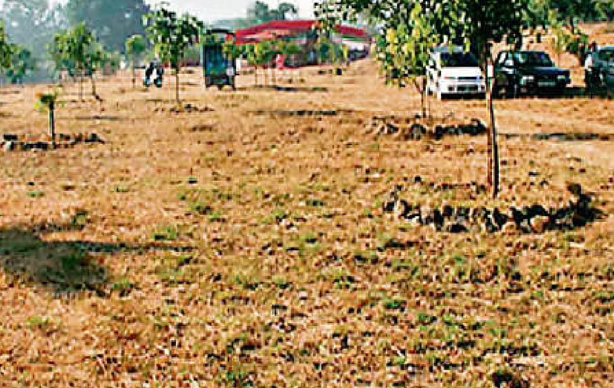 अब सरकारी जमीन पर भी लीज लेकर कर सकेंगे खेती, मोदी सरकार ने लिया बड़ा फैसला