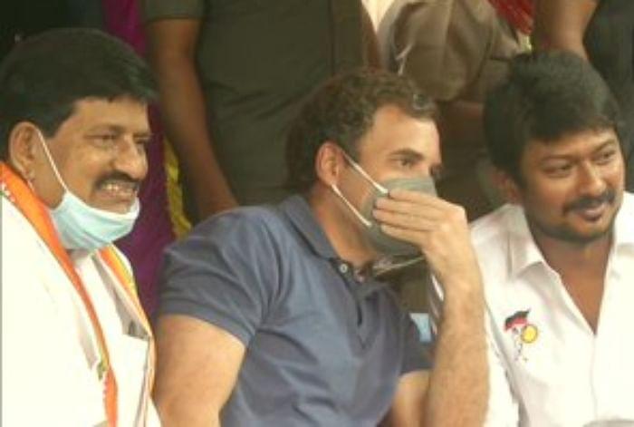 Jallikattu महोत्सव में शामिल होने मदुरै पहुंचे  राहुल गांधी सोशल मीडिया में हुई खूब खिंचाई, ट्विटर पर टॉप ट्रेंड- #Goback_Rahul