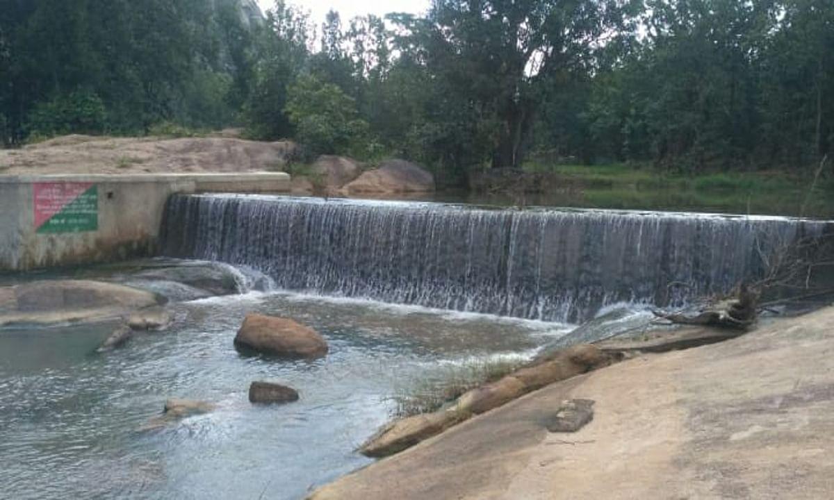Jharkhand news : पालकोट के वन्य प्राणी आश्रयणी क्षेत्र के बीचो-बीच बना नहर, जहां जंगली जानवर बुझाते हैं अपनी प्यास.