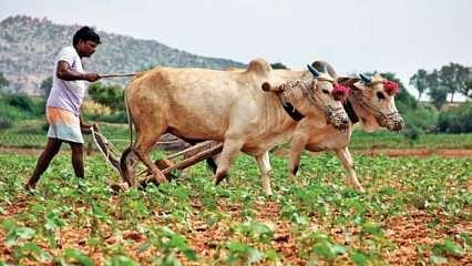KCC से लोन लेने वाले बिहार के किसानों के नीतीश सरकार की सौगात, 90 फीसदी तक ब्याज होगा माफ, जानिए नियम