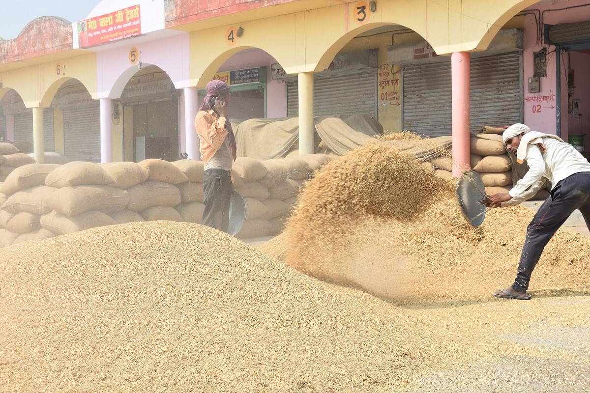 Bihar News: दिल्ली में किसान आंदोलन के बीच बिहार सरकार का बड़ा फैसला, अब 21 फरवरी तक होगी धान की खरीद