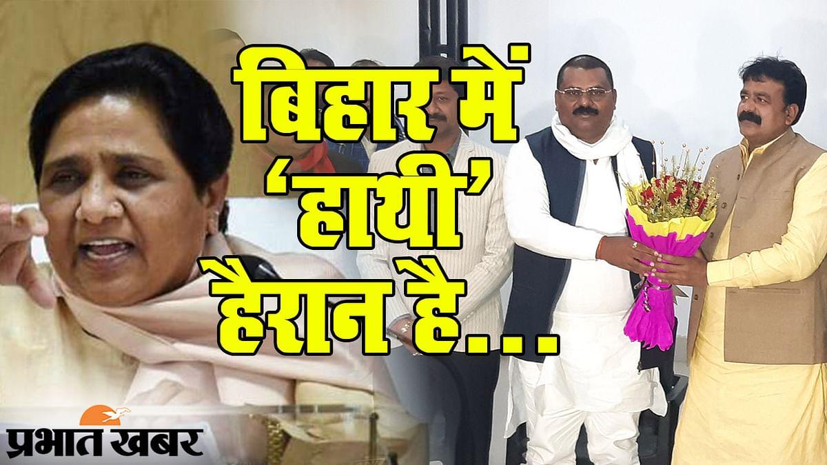 बिहार से 'हाथी' गायब, कैबिनेट विस्तार से पहले BSP के नहीं रहे जमा खान, मंत्रिमंडल में मिलेगी जगह?