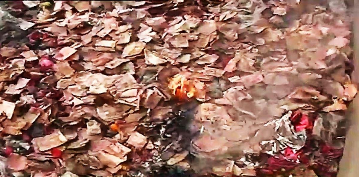 Kolkata News: काली घाट मंदिर के पास बोरियों में भरे मिले 50, 100 और 500 रुपये के कटे-फटे और जले नोट