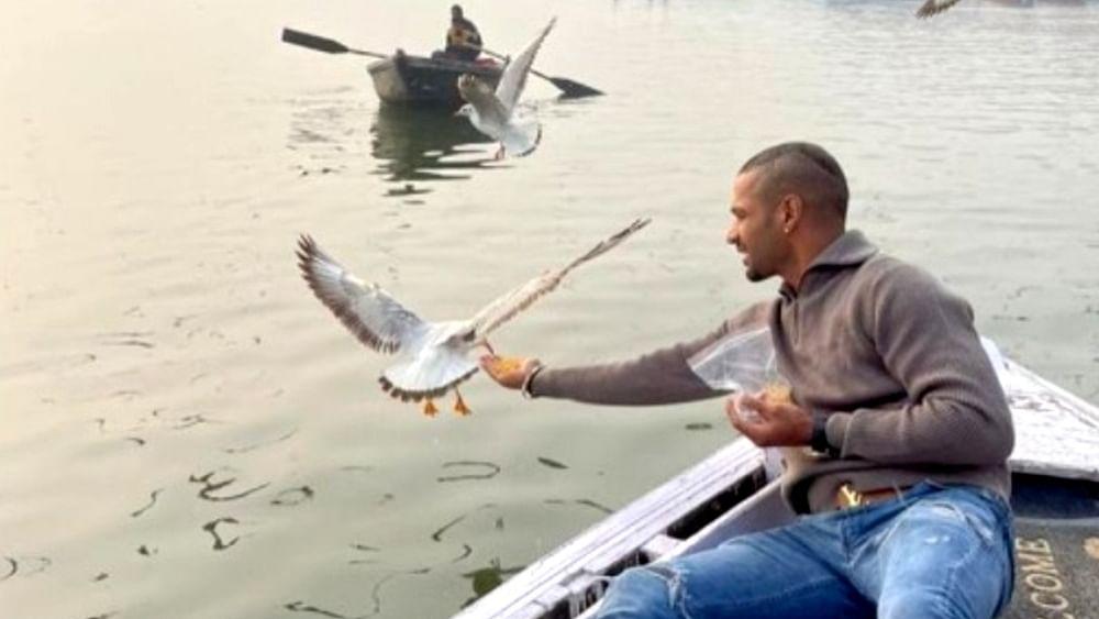 बनारस के घाट पर पक्षियों को दाना खिलाकर फंसे शिखर धवन, आप भूलकर भी न करें यह काम