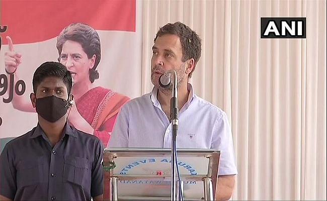 किसानों के दर्द को नहीं समझ रही केंद्र सरकार, केरल के वायनाड पहुंचे कांग्रेस नेता राहुल गांधी के निशाने पर पीएम मोदी