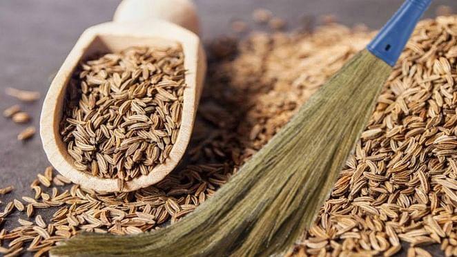 Cumin Benefits Side Effects: फूल झाड़ू की घास से बना जीरा आपकी सेहत को पहुंचा रहा नुकसान, असली और नकली जीरे में ऐसे करें पहचान