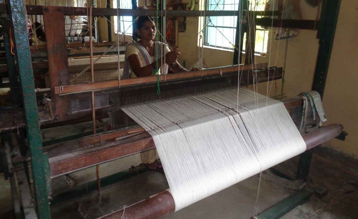 Jharkhand News : रेशम उत्पादकों को रोजगार से जोड़ने की तैयारी, सरायकेला खरसावां में सिल्क समग्र योजना से ऐसे बदलेगी तस्वीर