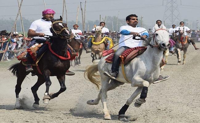 घुड़दौड़ प्रतियोगिता में भाग लेने बिहार आए 75 घोड़े, बेताज बादशाह और बोल्ट कई राज्यों से आए घोड़ों के बीच मुकाबला