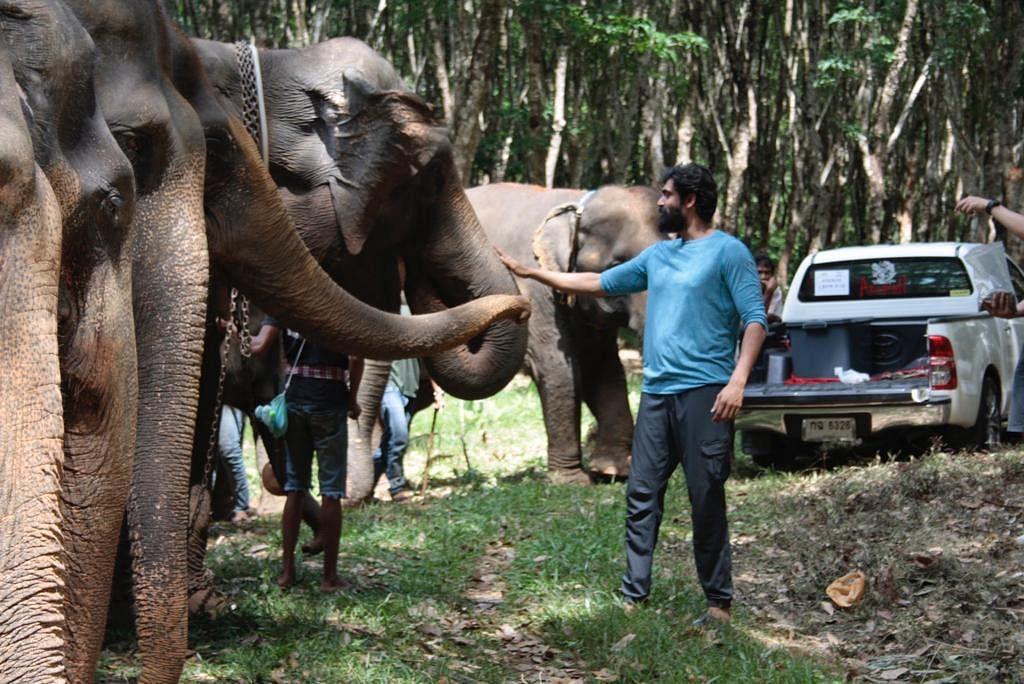 Rana Daggubati ने फिल्म 'हाथी मेरे साथी' में इनकी मदद से किया था हाथियों संग शूट, शेयर किया एक्सपीरियंस