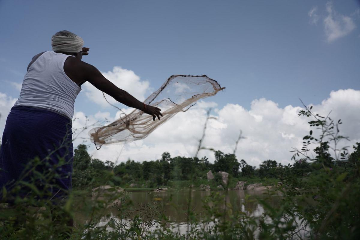 झारखंड में मछली पालन से मिल रहा रोजगार, मत्स्य उत्पादकों को हो रही अच्छी आमदनी, नीली क्रांति के लिए इस प्लान पर काम कर रही हेमंत सोरेन सरकार