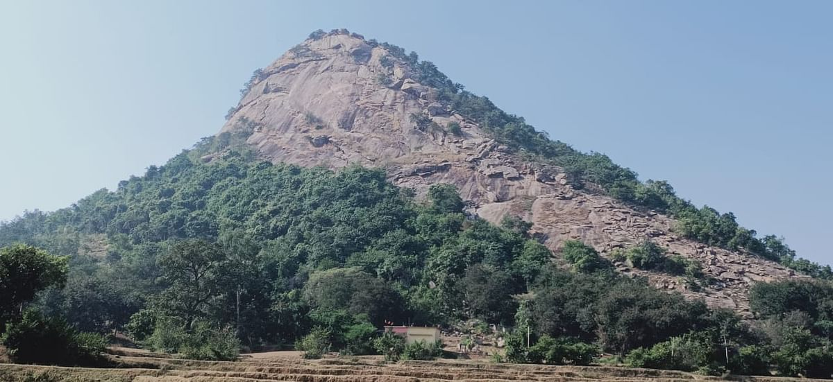 Holi 2021 : झारखंड के इस गांव में लोग नहीं खेलते होली, रंग-अबीर को हाथ तक नहीं लगाते
