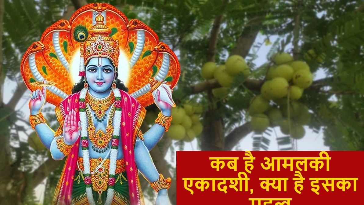 Amalaki Ekadashi 2021: 25 मार्च को इस मुहूर्त में मनायी जाएगी आमलकी एकादशी, क्यों इस दिन होती है आंवले की पूजा, क्या है विष्णु पूजा विधि, महत्व व मान्यताएं