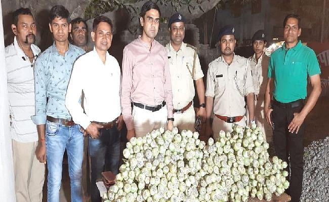 Bihar News: नालंदा में एक हजार पीस अफीम का पौधा जब्त, जानें इससे कितने प्रकार के ड्रग्स किये जाते है तैयार