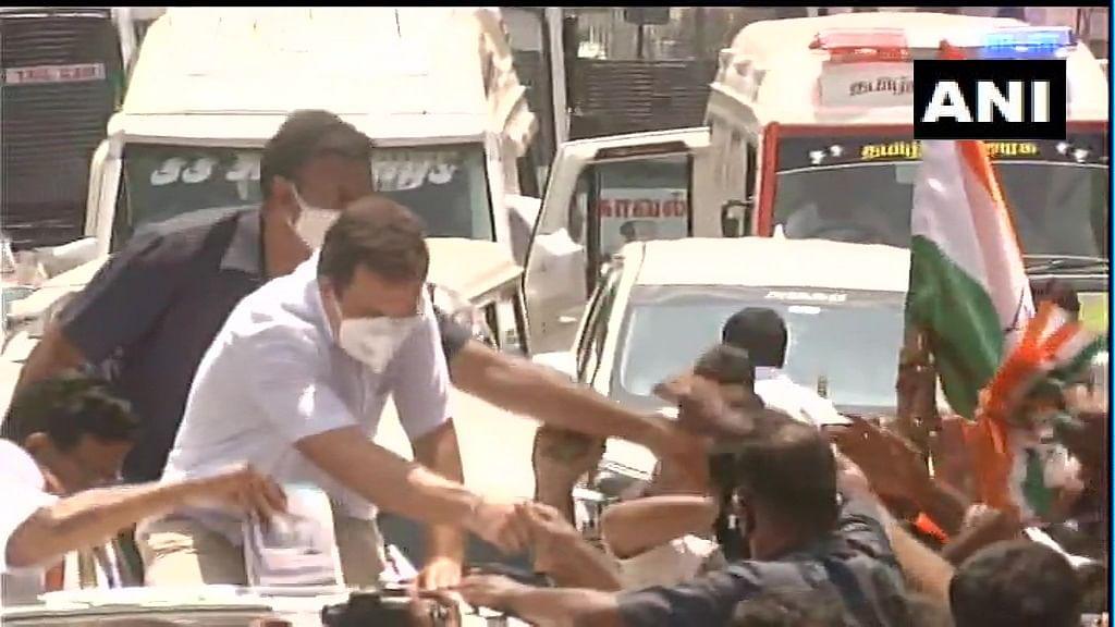 Rahul Gandhi in Tamil Nadu : समु्द्र में छलांग से कामराज से प्रेम तक, क्या काम आयेंगे ये राजनीतिक दांव?