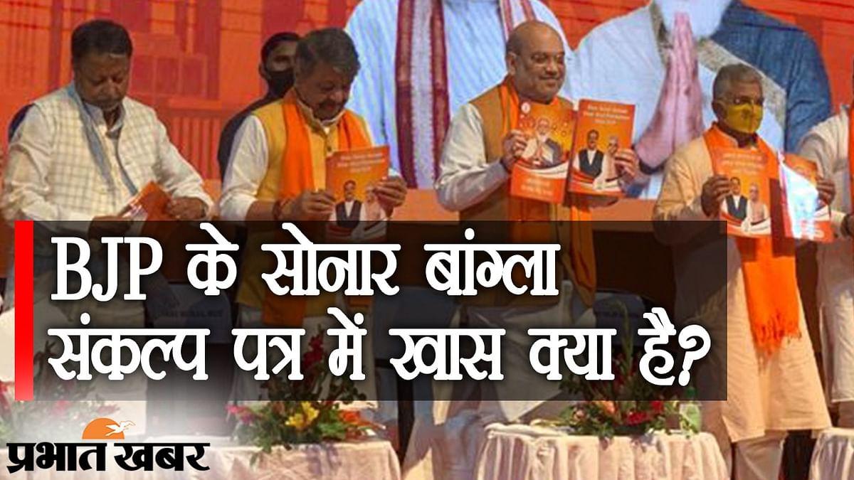 BJP का संकल्प पत्र जारी, महिलाओं और बुजुर्गों से लेकर हर तबके पर नजर, CAA लागू करने का भी भरोसा
