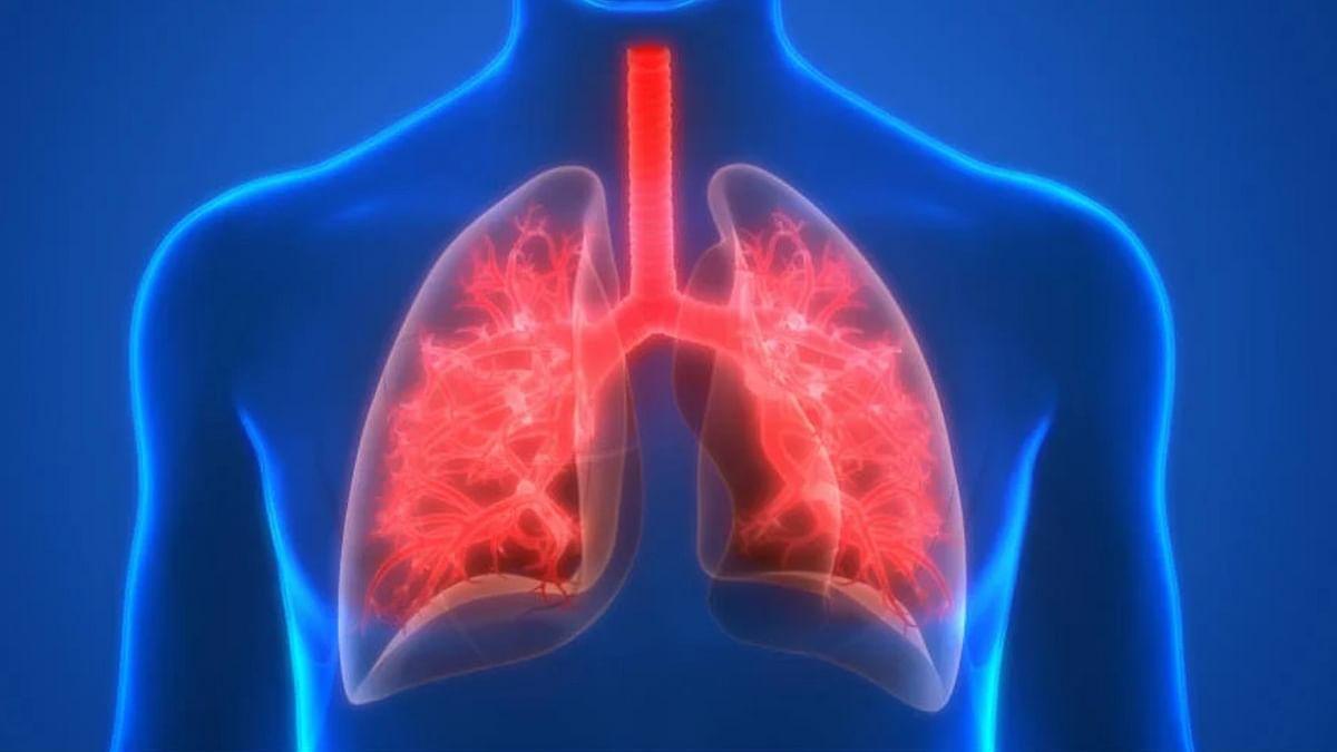 Healthy Lungs Tips: कोरोना काल में ऐसे Infection से बचाएं अपने फेफड़े, इन 5 उपाय से रखें स्वस्थ