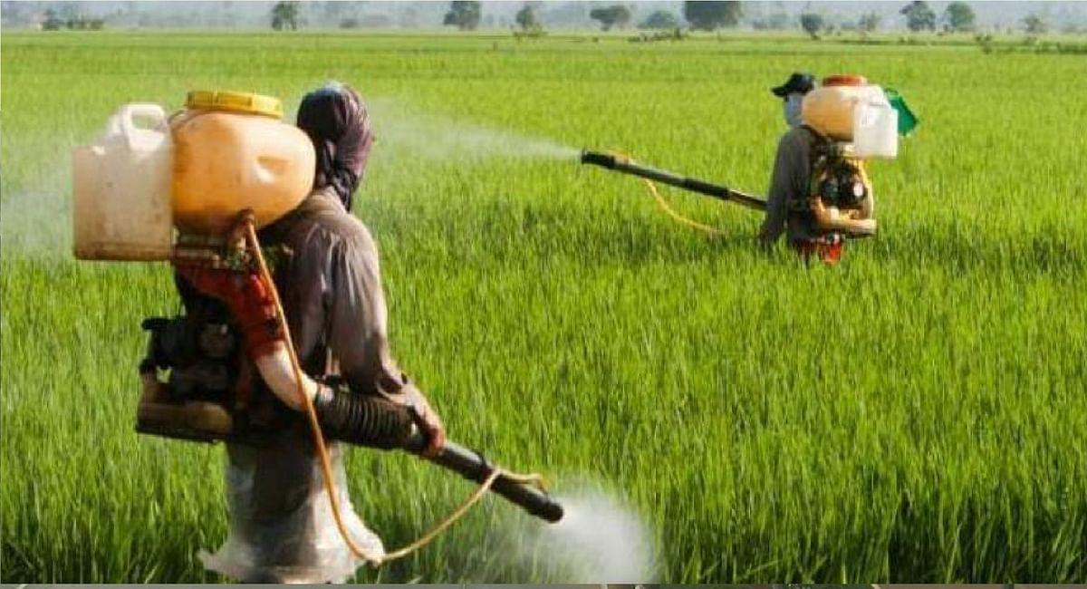 किसानों को बड़ी राहत : नहीं बढ़ेगी खाद की कीमत, सरकार ने  कंपनियों से कहा, पुरानी कीमत पर ही बेचें