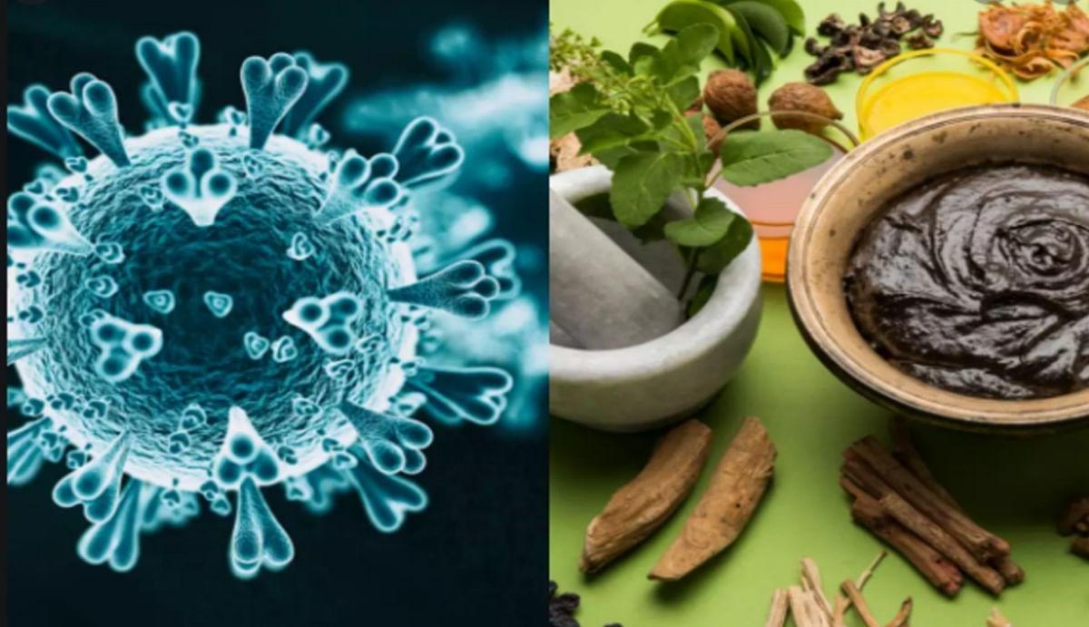 Coronavirus: कफ जनित रोग है कोरोना, आयुर्वेद में इससे बचाव व सुरक्षा के हैं उपाय, जानें क्या सलाह देते हैं डॉक्टर