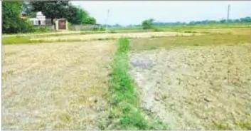 बिहार में लगान चुकानेवाला एक ऐसा गांव जिसमें अब नहीं है एक भी घर