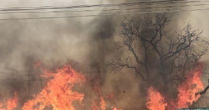 उत्तर 24 परगना में लकड़ी गोदाम जल कर खाक, जांच में जुटी पुलिस